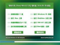 雨林木�L Ghost Win10 32位 ��I版 2016V09