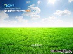 雨林木风Ghost Win10 (64位) 经典专业版 v201905(激活版)